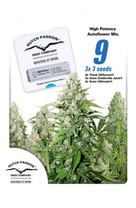 SEMILLA HIGH POTENCY AUTO DUTCH PASSION
