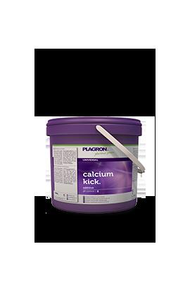 CALCIUM KICK PLAGRON 5Kg (calcio y magnesio)