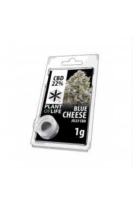 Jelly 22% CBD Extracción de queso azul 1G