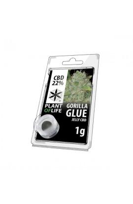 Jelly 22% CBD Extracción de Gorila Glue 1G