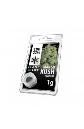 JELLY 22% CBD Mango Kush Extracción 1G