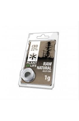 JELLY 22% CBD Extracción Raw natural1G