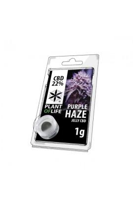 JELLY 22% CBD Purple Haze Extraction 1G