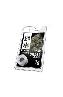 Jelly 22% CBD Extracción de Soul Diesel 1G