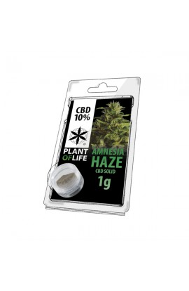 Sólido 10% CBD Amnesia Haze Extraction 1G