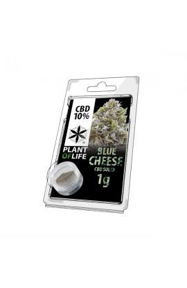 Sólido BLUE CHEESEcon 10% de CBD 1G