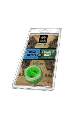 Jelly 22% CBD Amnesia vs BB Extraction 0.5G + 0.5G