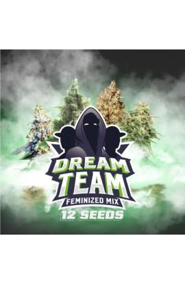 Dream Team Feminized Mix 12 SEMILLAS