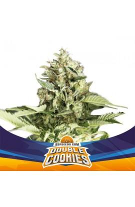 Double Cookies Auto