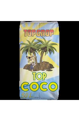 SUSTRATO TOP CROP TOP COCO